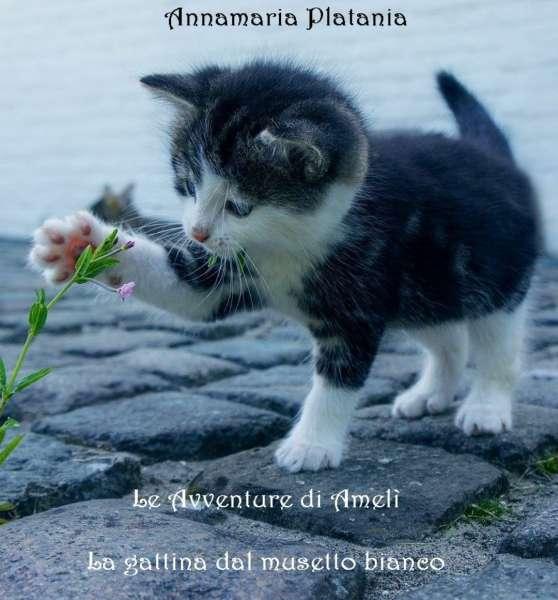 Annamaria Platania - Le avventure di Amelì