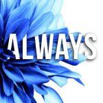 Aria M-Always